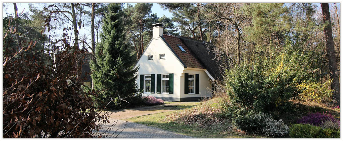 Cottage Overijssel from 2018